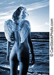 bonito, blue), anjo, pôr do sol, mar, tempo, (toned