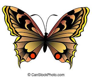 bonito, borboleta