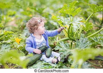 bonito, cacheados, menina bebê, sentando, em, um, cultive...