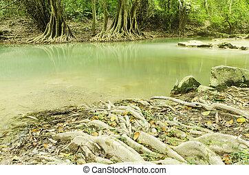 bonito, cachoeira, em, natureza, tailandia