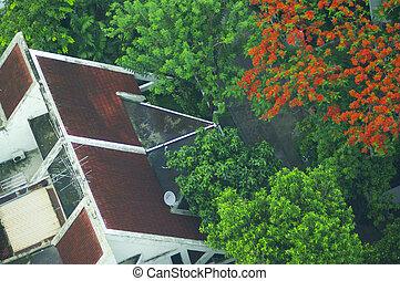 bonito, casa, chalé, jardim telhado