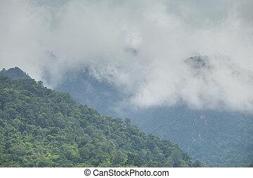 bonito, cenário montanha, e, nebuloso