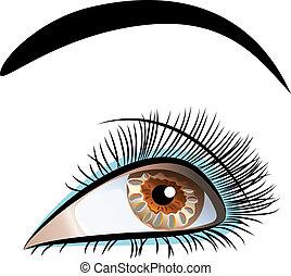 bonito, closeup, vetorial, olho, femininas