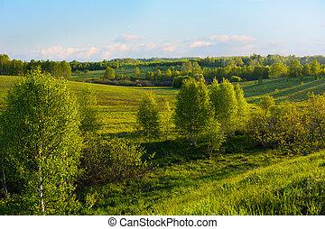 bonito, colinas, paisagem