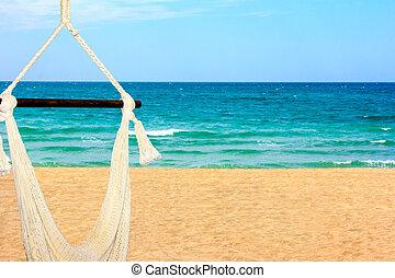 bonito, convidando, rede, mar, cortez, paisagem, vista