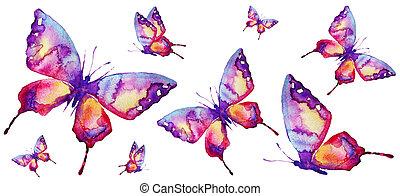 bonito, cor-de-rosa, borboleta, ligado, um, branca