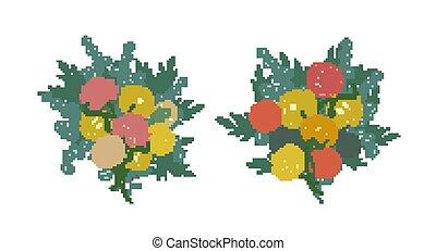 bonito, cor-de-rosa, illustration., floristic, elements., pacote, vetorial, isolado, amarela, ou, experiência., plantas, desenho, grupos, buquês, florescer, cobrança, flores brancas, florescendo, jardim