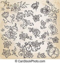 bonito, elementos florais, -, mão, desenhado, retro floresce, folheia, e, ornamentos, -, em, vetorial