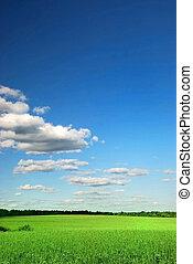 bonito, encantador, nuvens, glebas cultivadas