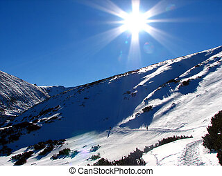 bonito, ensolarado, Inverno, Dia