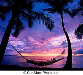 bonito, férias, pôr do sol, rede, silueta, com, coqueiros
