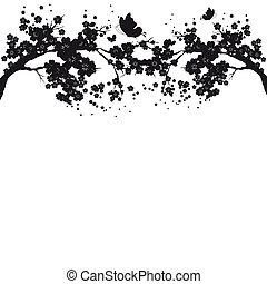 bonito, flor, silueta, ramo, branca