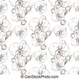 bonito, flores, vetorial, orquídea