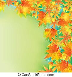 bonito, folha outono, fundo, outono