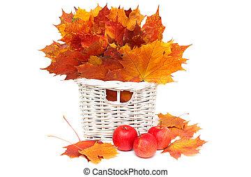 bonito, folhas, -, isolado, arranjo, outono, maçãs, branco vermelho