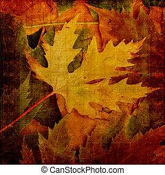 bonito, fundo, de, caído, outono sai, para, desenho