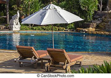 bonito, guarda-chuva, jardim, piscina, árvores, tropicais, palma, mar, praia, daybeds, natação
