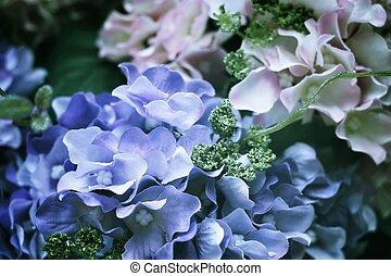 bonito, hydrangea, flores