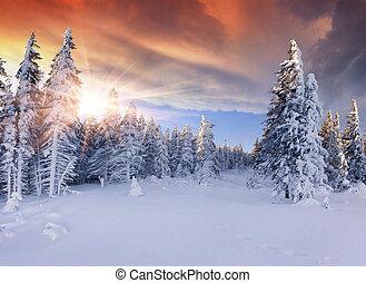 bonito, inverno, amanhecer, em, a, montanhas., dramático, céu vermelho
