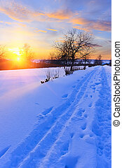 bonito, inverno, pôr do sol