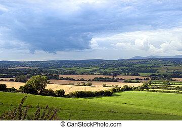 bonito, irlandês, terra cultivada, luxuriante