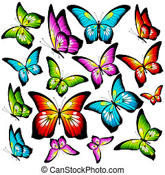 bonito, isolado, branca, jogo, cor, borboletas
