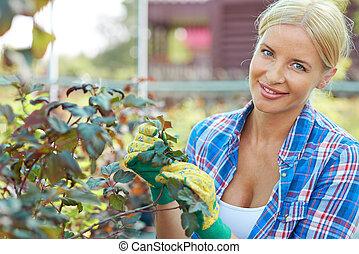 bonito, jardineiro