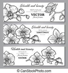 bonito, jogo, três, horizontais, flores, bandeiras, orquídea