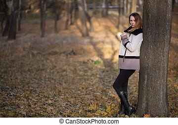 bonito, jovem, morena, retrato mulher, em, outono