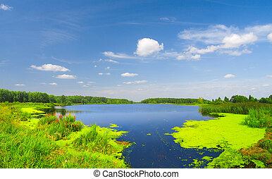 bonito, lago