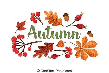bonito, lettering, decorado, illustration., árvore, isolado, calligraphic, outono, experiência., berries., vetorial, bolotas, sazonal, folhas, cursive, branca, fonte, caído, composição, manuscrito