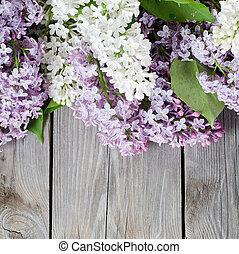 bonito, lilás