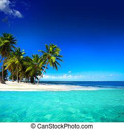 bonito, litoral, arte, fundo, vista