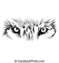 bonito, lobo, rosto