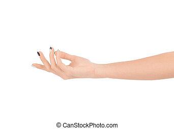 bonito, mão feminina, isolado, branco, experiência.