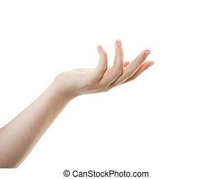 bonito, mão feminina, isolado, branco, fundo