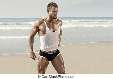 bonito, macho, modelo