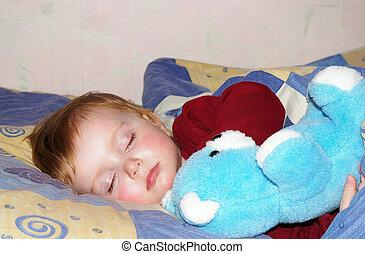 bonito, menina, urso, dela, dorme