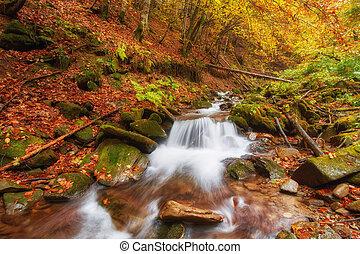 bonito, montanha, coloridos, folhas, Outono, Cachoeira, floresta, laranja, Rio, vermelho, pôr do sol