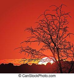 bonito, montanhas, pôr do sol