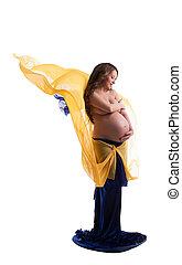 bonito, mulher grávida, posar, com, véu