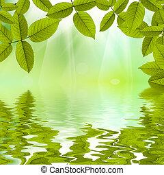 bonito, natureza, verão, fundo, refletido dentro, água