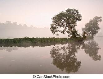 bonito, nebuloso, amanhecer, paisagem, sobre, rio, com, árvores, e, sunb