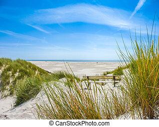bonito, norte, duna, longo, mar, praia, paisagem