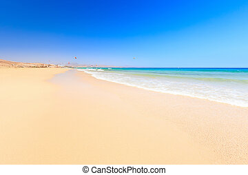 bonito, oceânicos, praia