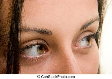 bonito, olhos marrons