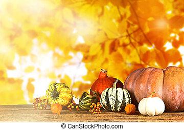 bonito, outono, fundo