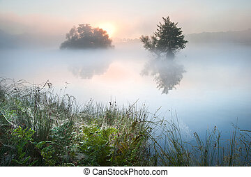 bonito, outono, outono, paisagem, sobre, nebuloso, nebuloso, lago, wih, glowin