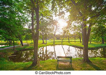 bonito, pôr do sol, parque