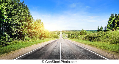 bonito, panorama, floresta, estrada